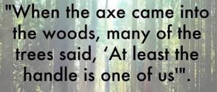 The Trees and The Axe -